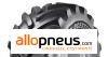 PNEU Bridgestone VT COMBINE 650/75R32 173A8 TL,Radial,IF,cfo
