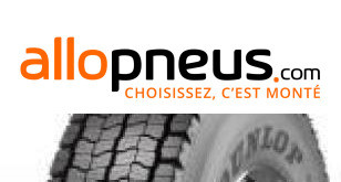 PNEU Dunlop SP462 295/80R22.5 152L TL,Radial,M+S,3PMSF